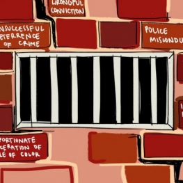 Disproportionate incarceration of people of color; unsuccessful deterrence of crime; wrongful conviction graphic cropped into a square