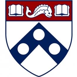 Penn Shield in white, burgundy, and navy blue